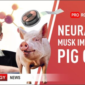 Neuralink Elon Musk: new chip and news from the presentation | Latest robots and technologies